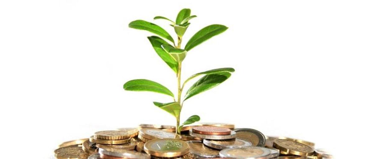 Что такое депозит простыми словами и какими они бывают? Как начисляются проценты по депозиту? Где наиболее выгодные ставки по депозитам? Читайте в нашей статье