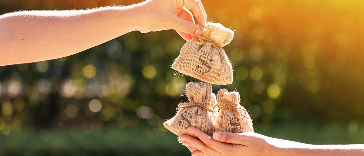 Как взять кредит без залога ИП и малому бизнесу?